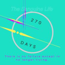 270 Days Watermark